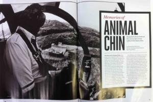 Memories of Animal Chin